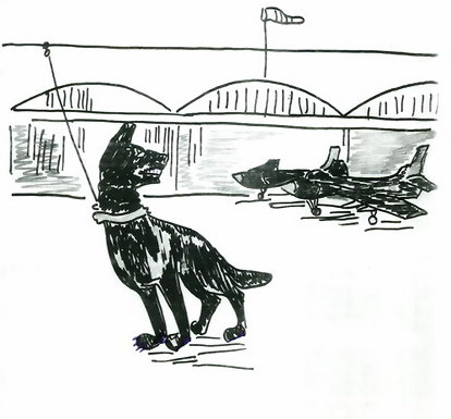 utbildad vakthund som vaktar